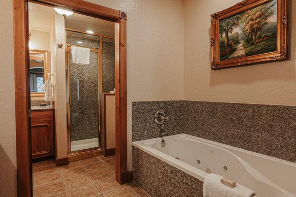 1 bedroom villa shower.bath.guest bath